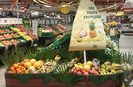 Photo d'un étal de fruits exotiques