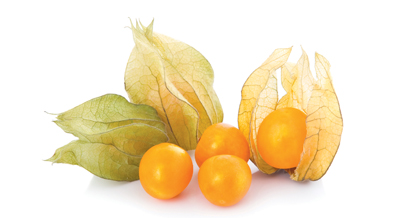 img_fruits_exotiques_physalis_grossiste_restauration