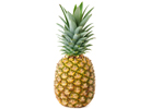 operations_ananas_extra_sweet_fruits_exotiques_distributeur_fruits_legumes