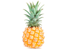operations_ananas_victoria-fruits_exotiques_distributeur_fruits_legumes