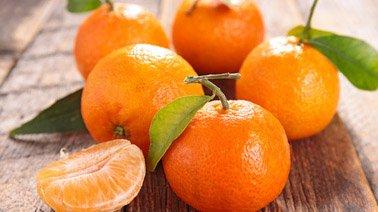 1188e1f37a218b Oranges fraîches | TerreAzur | Grossiste et distributeur d'oranges ...