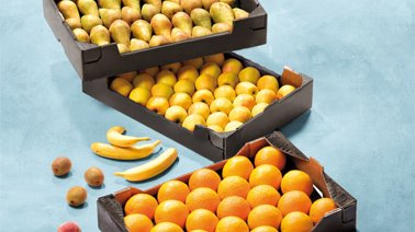 img_suggestions_fruits_comptes